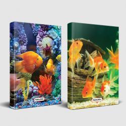 Sevimli Hayvanlar Defter Deniz Sakinleri ve Balık Ailesi