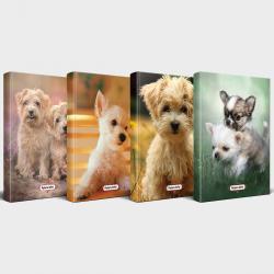 Sevimli Köpekler 4'lü Planlama Defteri Seti