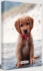 Masum Köpek - Süresiz Planlama Defteri