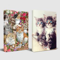 Meraklı Kediler ve Maviş Kedileri Planlama Defteri