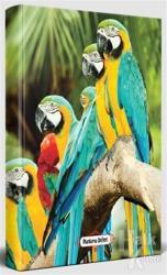 Papağan Ailesi - Süresiz Planlama Defteri