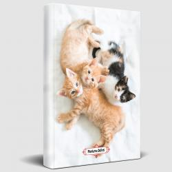 Oyuncu Kedi Planlama Defteri