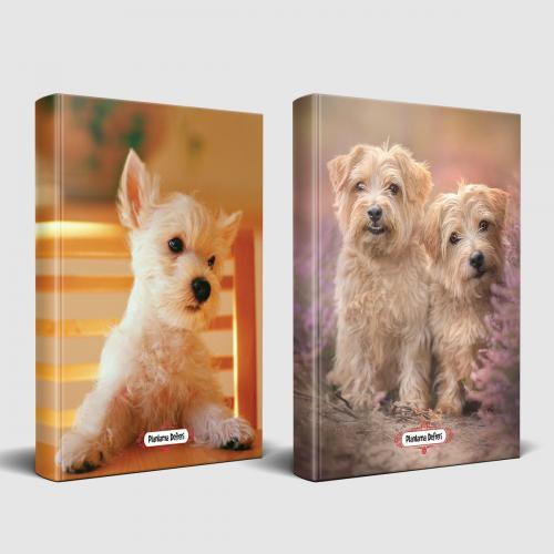 Köpek Temalı Defter Seti Beyaz İkili ve Pamuk Şeker - -Halkkitabevi