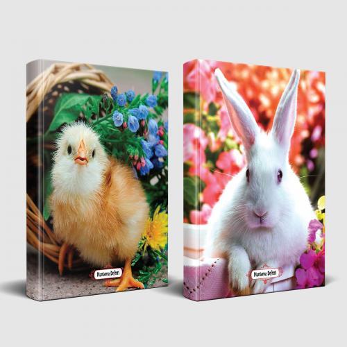Sevimli Hayvanlar Defter Civciv ve Beyaz Pamuk