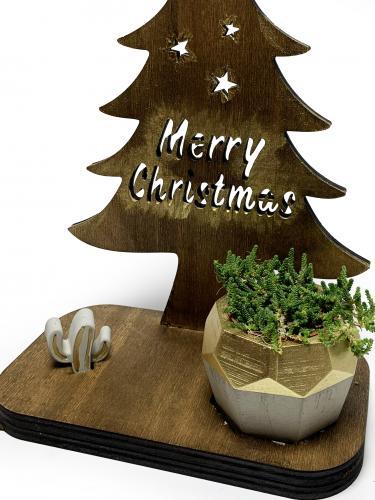 Merry Christmas Temalı Dekoratif Saksılık
