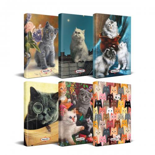 Kedi Temalı Süresiz Planlama Defter Seti - 6 Defter - -Halkkitabevi