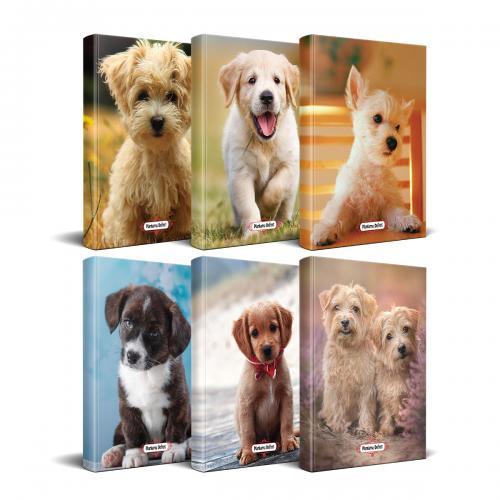 Köpek Temalı Süresiz Planlama Defter Seti - 6 Defter - -Halkkitabevi