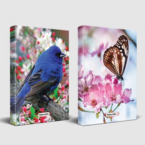 Sevimli Hayvanlar Defter Kuş Bakışı ve Kelebek Etkisi