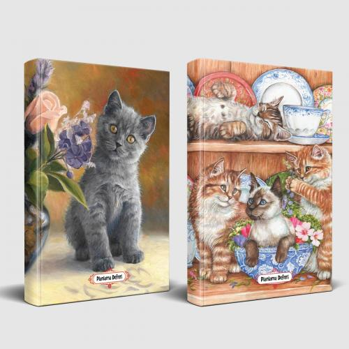 Masum Kedi ve Evin Kedileri Planlama Defteri