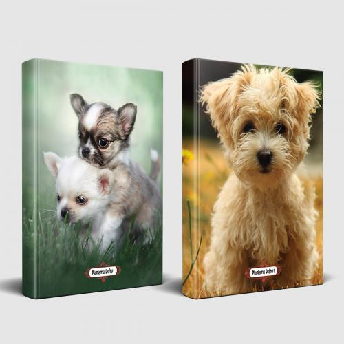 Köpek Temalı Defter Seti Minik Arkadaş ve Masum Köpekcik