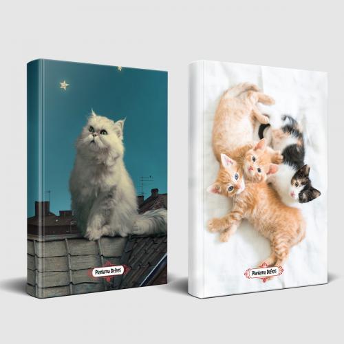 Pamuk ve Oyuncu Kediler Planlama Defteri